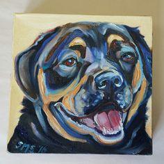 Vibrant, Expressive Animal Art at Free Rein Art, Dog Smiles, 8 x 8 original oil painting