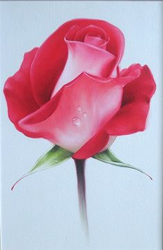 Sacred Really Like - 22 Solutions That Should Change The Tide In Your Daily Life Along With The Lives Of Any Individual Flores Y Letras Para Decoupage Pg. Watercolour Painting, Watercolor Flowers, Painting & Drawing, Decoupage, Beautiful Rose Flowers, Color Pencil Art, Rose Buds, Flower Art, Red Roses