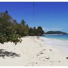 The beach at Cape Panwa Hotel - photo courtesy of goofyroofy5 and Instagram