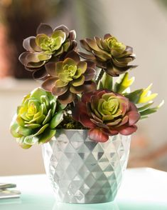 9 Inspired Hacks: Artificial Plants Decoration Home artificial garden rocks.Artificial Plants Decoration Living Rooms where to buy artificial flowers. Artificial Plants And Trees, Artificial Plant Wall, Artificial Succulents, Faux Succulents, Planting Succulents, Artificial Flowers, Indoor Plants Low Light, Plants Indoor, Indoor Garden