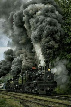 Shay Steam Logging Locomotive Number 6 at Cass Scenic Railroad State Park, Cass, West Virginia Locomotive Diesel, Steam Locomotive, Train Tracks, Train Rides, Old Steam Train, Tramway, Train Art, Train Pictures, Old Trains