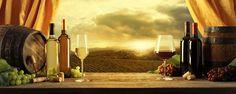 Wine Landscape, a perfect wine photo for your business or collection! Large and Wide Panorama Wine Photos