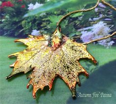 Real Canadian Sugar Maple Leaf, Natures Leaves, NEW Autumn Green Patina Newest Pieces