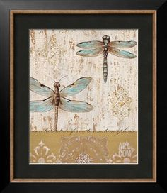 Dragonfly Evolution Art Print