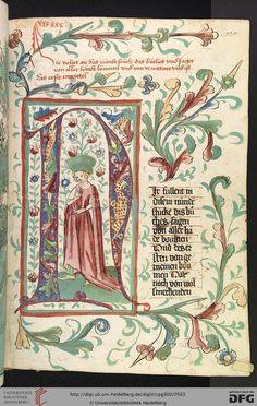 Cod. Pal. germ. 300 Konrad von Megenberg Das Buch der Natur Hagenau - Werkstatt Diebold Lauber, um 1442-1448? Page: 238r N-Initiale mit Frau in rotem Kleid im Binnengrund