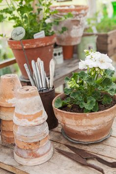 Terracotta pots...garden whenever possible--a window herb garden is a wonderful thing.  Don't forget to wear a straw hat and sunblock.