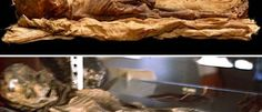 Roswell Alien Photographer Admits Pictures Were Faked http://yournewswire.com/roswell-alien-photographer-admits-pictures-were-faked/