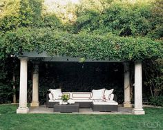 A green-covered Pergola