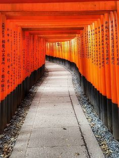Fushimi Inari Taisha, Kyoto, Japan, 伏見稲荷大社, 京都, 日本  Fushimi Inari Taisha is famous for its thousands of vermilion torii gates, which straddle a network of trails behind its main buildings. The trails lead into the wooded forest of the sacred Mount Inari, which stands at 233 meters and belongs to the shrine grounds.