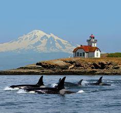 #Lighthouse, orcas, W San Juan islands, #WA, Mt Baker http://www.roanokemyhomesweethome.com