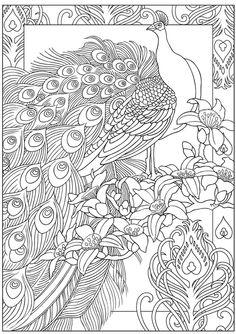 Coloring Book Colouring Peacocks Sun Animals