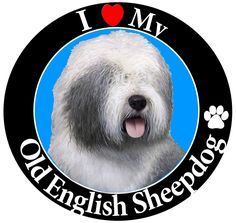 """I Love My Old English Sheepdog"" Car Magnet With Realistic Looking Old English Sheepdog Photograph In The Center Covered In UV Gloss For Weather and Fading Protection Circle Shaped Magnet Measures Inches Diameter Old English Sheepdog, Car Magnets, Circle Magnets, Dog Itching, Dog Training Pads, Dog Dental Care, Dog Shower, Dog Chew Toys, Dog Shedding"