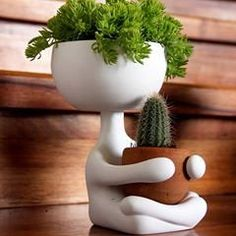 Best Indoor Garden Ideas for 2020 - Modern Face Planters, Indoor Planters, Diy Planters, Indoor Garden, Outdoor Gardens, Planter Pots, Cacti And Succulents, Planting Succulents, Mini Vasos