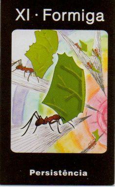 Formiga - Yang - Persistência