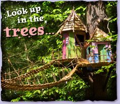 BeWILDerwood is a brilliant day out for children, where they can explore treehouses, zip wires, jungle bridges enjoy storytelling, fantastical creatures boat trips, marsh walks and more!