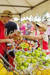 $0 / Mount Annan Botanical Gardens AnnanROMA Food and Wine Festival Sun 14 April, 10 am – 4 pm Taste your way around Lakeside. Showcasing local producers, restaurants and wineries. Free entry.  www.rbgsyd.nsw.gov.au/welcome/feature_stories/annanroma_food_and_wine_festival Mount Annan, Free Entry, April 10, Wine Festival, Wineries, Botanical Gardens, Wine Recipes, Sydney, Restaurants