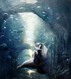 Dream of the Dolphin by InertiaK.deviantart.com on @deviantART