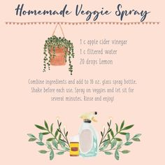 Make your own DIY Veggie Spray with Young Living EOs. Clean your food and know what products you are using! Essential Oil Cleaner, Essential Oil Spray, Yl Essential Oils, Young Living Essential Oils, Yl Oils, Cleaning Spray, Household Cleaning Tips, House Cleaning Tips, Cleaning Hacks