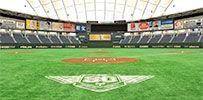 東京ドームシティ|野球情報|トップページ