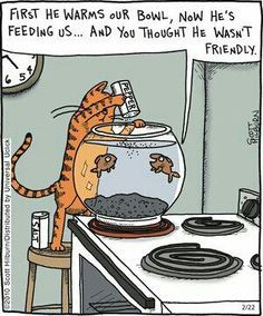 Bad Cat Hehe . But the cartoon is great . What do you think ? Like and share