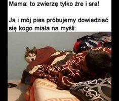Memes Humor, Games Memes, Memes Br, Famous Movie Quotes, Quotes By Famous People, People Quotes, Funny Lyrics, Polish Memes, Dark Sense Of Humor