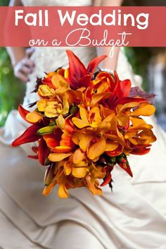 Did you know over 30% of weddings are held in fall months? Embrace this theme and the vibrate colors that Autumn has to offer! Using what is in season and in many cases FREE will help you budget! Use what mother nature offers this time of year in your wedding and save your budget for … frugal wedding Ideas #frugal #wedding