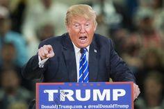 "Donald Trump Intensifies His Ridiculous ""Golfgate"" Feud with Samuel L. Latina, Trump Speech, Current President, Presidential Candidates, Us Presidents, Economics, Flirting, Donald Trump, Pigs"
