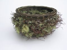 Lichen Bowl--What a great use of natural materials    Basket by Joe Hogan