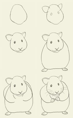 a hamster- for Connor bc he loves to draw