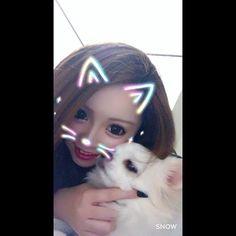 嫌がられてる?#愛犬#犬#dog#my#followme#love#like#snow#smile#instagood#instagram#instalike#instafollow#instaday#instacute#instahappy#instdog