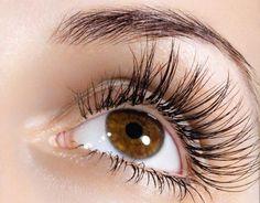 5 Tratamientos Naturales, que Harán que Tus Pestañas, crezcan hasta 2 cm en sólo 2 días