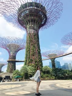 Singapore : Itinerary + Budget Guide for First-Timers Singapore Tourist Spots, Singapore Itinerary, Singapore Travel, Cool Places To Visit, Places To Travel, Travel Destinations, Places To Go, Us Road Trip, Online Travel