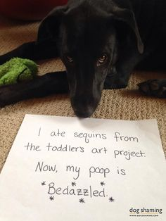 I ate sequins from the toddler's art project. Now, my poop is bedazzled. Moose loves to get involved in our crafts, mostly by taste-testing ...