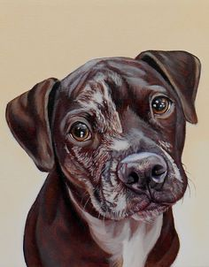 """Pigeon"" 8"" x 10"", oil on canvas www.jamesrubyworks.com"