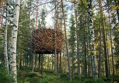 """wo of the 24 planned tree houses at Treehotel in Harads, Sweden, located about 40 miles south of the Arctic Circle. Each tree house carries its own theme and includes a """"state of the art eco-friendly incineration toilet"""" and electric floor heating. This one is The Bird's Nest by InredningsGruppen."""