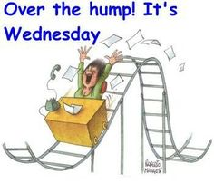 over the hump quotes days of the week wednesday humpday Funny Wednesday Quotes, Wednesday Hump Day, Wednesday Greetings, Good Morning Wednesday, Wednesday Humor, Wonderful Wednesday, Good Morning Quotes, Funny Quotes, Wednesday Coffee