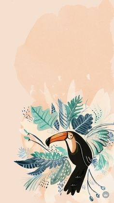 www.thinkmakeshareblog.com wp-content uploads FREE-DOWNLOADABLE-iPHONE-WALLPAPERS-_-Toucan-Burst-_-thinkmakeshareblog.jpg
