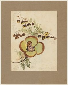 Boronia Baby, colour illustration by May Gibbs. From the collections of the Mitchell Library, State Library of New South Wales www. Aussie Christmas, Australian Christmas, Baby Artwork, Scottie Dog, Aboriginal Art, Australian Artists, Faeries, Vintage Prints, Illustration Art