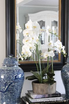 Living Rooms - Melinda Hartwright Interiors