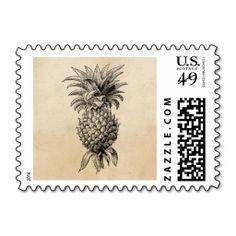 Vintage 1800s Pineapple Illustration Pineapples Stamps