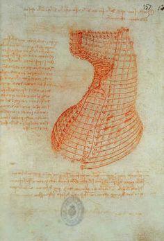 Leonardo da Vinci - Codex Madrid 1/57-R Study for a sculpture of a horse
