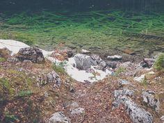 tree-cemetery http://bit.ly/eibsee-6 #haunted #outdoors #hiking #wanderlust #bavaria