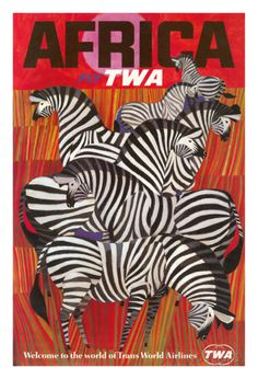 Africa - Trans World Airlines Fly TWA - Zebras Giclee Print at AllPosters.com