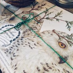 Winter Owl paper placemats from an original Vicki Sawyer painting. Designed and printed in the USA!