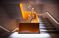 Recent_Spaces_Cameron_Design_House_Haara-stair_01.jpg (imagem JPEG, 1500 × 975 pixels) - Redimensionada (99%)