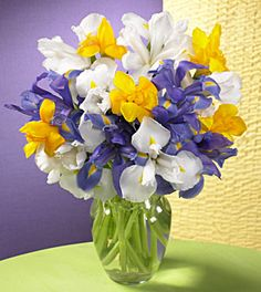 love iris