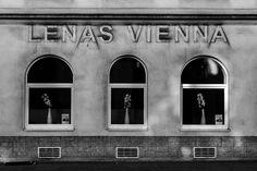 Oh Vienna . Andermatt, Great Love, Vienna, Urban, Window, Street, Photography, Photograph, Windows