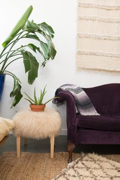 Featuring our violet Velvet Underground sofa for our #PatinaZodiacStyle project | Patina