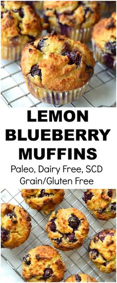 Moist Lemon Blueberry Muffins that are bursting with flavour. This recipe is Grain/Gluten Free, Dairy Free, Paleo, Specific Carbohydrate Diet Legal Paleo Blueberry Muffins, Lemon Muffins, Healthy Muffins, Blue Berry Muffins, Paleo Breakfast Muffin, Blueberry Breakfast, Diet Breakfast, Paleo Dessert, Galletas Paleo