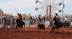 Queen Creek Rodeo